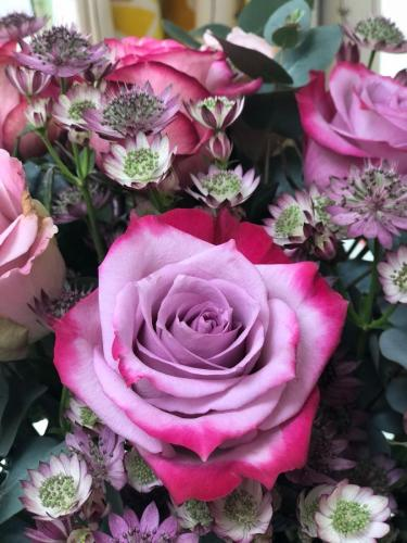 raspberry ripple rose and astrantia bouquet