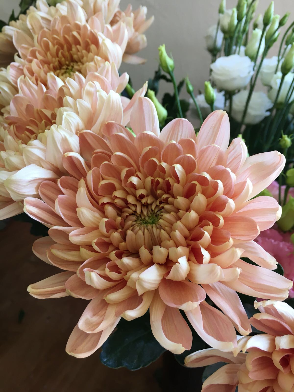 Chrysanthemum, Autumn wedding flowers, pink wedding flowers