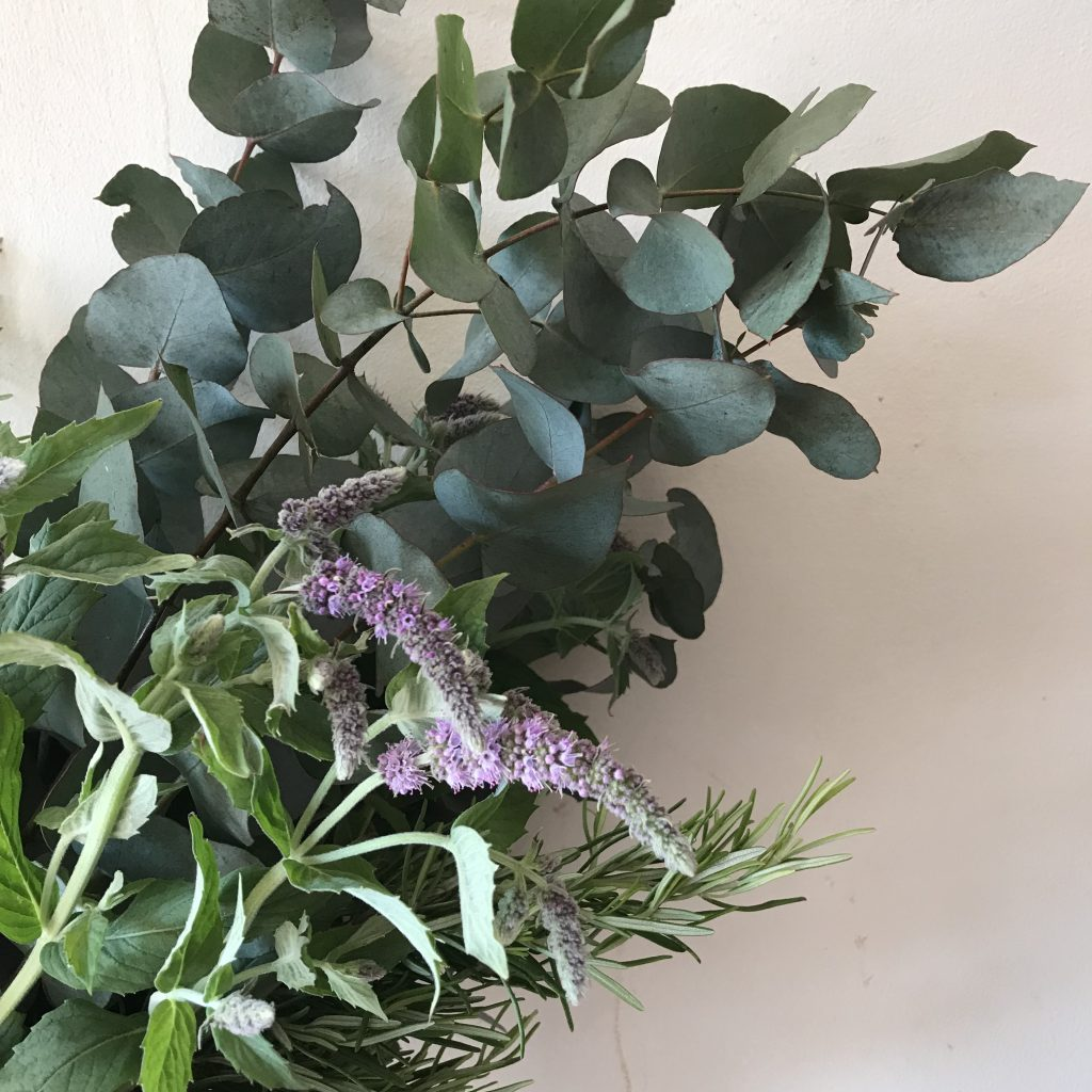Flowering Mint, Rosemary and Eucalyptus