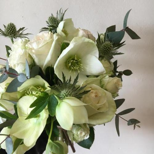 Hellebore bridesmaid